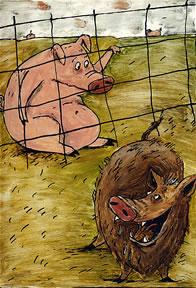kleine_tiere-schwein
